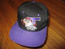 vtg 90s TASMANIAN DEVIL HAT Black Purple Snapback Sewn Two-Tone Tornado Taz