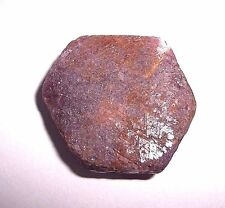 49.2 Gram Natural Hexagonal Ruby Crystal with Record Keepers! #24