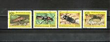 Liquidation * Guinea / Insects ! Only Start $0.01 (X1590 )