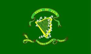 Sons of Erin Flag Irish Banner Ireland Pennant 10th Tennessee 3x5
