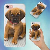 ANIMAL DOG PUPPY PUG HARD BACK CASE FOR APPLE IPHONE PHONE