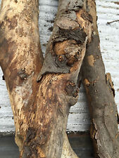 Dry Apple Wood Chunks / Hardwood Smoking Flavor / Bbq Grilling Wood