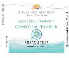 Great Tree #7 Psychic Protection - Advanced Alchemy 50ml Grizzly Giant Bark