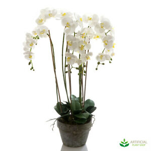 Artificial Fake Plants Orchid in Terracotta Pot 95cm