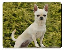 White Chihuahua Dog Computer Mouse Mat Christmas Gift Idea, AD-CH32M