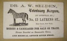 1870's Horse Veterinary Surgeon Business Trade Card, Lyons NY w/ Horse Woodcut