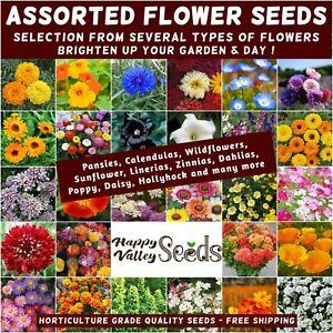 FLOWER GARDEN SEEDS 100+ TYPES sunflower wild flowers pansy marigold zinnia many