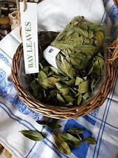 Organic English BAY LEAVES dried 100+ gr culinary/medicinal/crafts/pot pourri