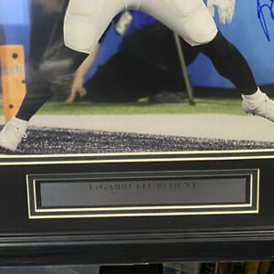 Lagarett Blount EAGLES  Super Bowl  Framed Signed With Authentication From JSA.