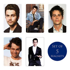 Dylan O'Brien FRIDGE MAGNETS Set of 5 NEW The Maze Runner Teen Wolf