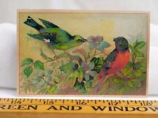 The Diamond Dyes Domestic & Fancy Dyeing List Of Colors Colorful Birds Image F38