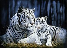 White Tiger Mother and Cub Canvas Multi Sizes Wall Art Poster Print Wild Cats