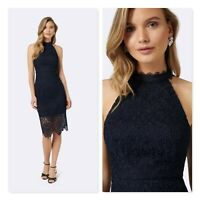 FOREVER NEW Womens Size AU 16 Beverley Lace Pencil Dress RRP$159.95