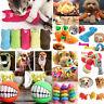 Funny Pet Dog Cat Durability Toy Dog Puppy Elasticity Teeth Play Chew Toys Hot
