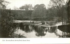 Evening Near, Spring Park, Osage, Iowa. Ia. Cattle In Lake/River/Stream.