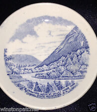 """ALFRED MEAKIN OLD ENGLISH STAFFORDSHIRE JONROTH ENGLAND BLUE BUTTER PAT 3 3/8"""""""