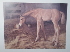 James Crow, Barnyard Pals, Horse Colt and Cats S/N Print