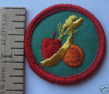 Girl Scout 1980's Junior HEALTHY EATING BADGE Fruit Banana Apple Nutrition Patch