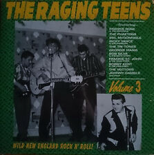 The Raging Teens - Volume 3 LP Norton Records Wild New England Rock N Roll
