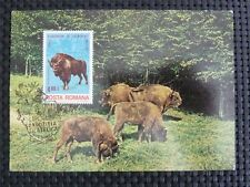 ROMANIA MK BISON BISONS WISENT WISENTE MAXIMUMKARTE MAXIMUM CARD MC CM c4711