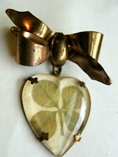 Real Clover In Hanging Bubble Brooch Beautiful Antique 4 Leaf Clover Pendant