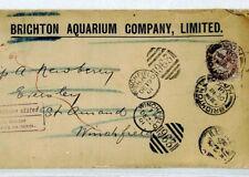 GB FISH *Brighton Aquarium* Cover UNDELIVERED Winchfield Hants 1901 Sussex CV264