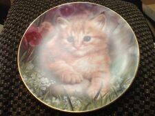 Timid Tabby From The Cameo Kittens Plate Collection By Qua Lemonds Cat