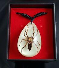 GITD Spider Brown Recluse Necklace goth dark occult taxidermy