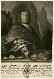 Rare Antique Master Print-JOHANN JACOB SCHEUCHZER-SCIENTIST-Heidigger-1731
