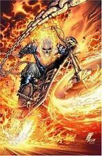 Ghost Rider - Vicious Cycle Vol. 1 (2007, PB) - Marvel Comics Graphic Novel