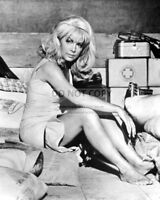 ACTRESS STELLA STEVENS - 8X10 PUBLICITY PHOTO (BB-982)