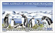 TAAF 2019 Frans Antarctica  Pinguins    postfris/mnh