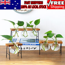 Crystal Glass Test Tube Vase in Wooden Stand Flower Pots for Plant Hydroponic AU