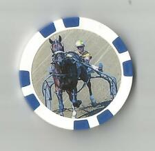 **STORM DAMAGE** HARNESS  HORSE RACING COLLECTOR CHIP