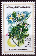 Yt N° 717  MAROC MOROCCO Fleur - Flore marocaine Neuf ** TTB