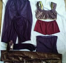 Purple Princess Jasmine Belly Dancer Arabian Princess Fancy Dress Costume Small