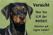 DOBERMANN - A4 Metall Warnschild SCHILD Hundeschild Alu Türschild - DBM 22 T7