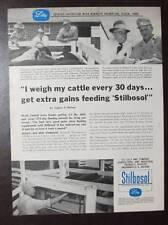 Original 1956 Stilboso Feed Ad Photo Endorse by Kenneth & Bryon Thompson of Iowa