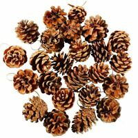24 Pieces Pine Cones Ornament Natural PineCones With String Pendant Crafts D6C3