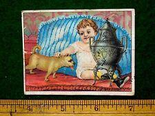 1870s-80s Cut Child Petting Pug Dog Dilworth's Coffee Victorian Trade Card F32