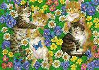 ' Cat ' modern Rare new postcard