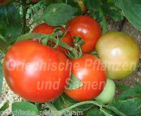🔥 🍅 KRETA Tomate *Fleisch-Tomaten aus Griechenland*10 Samen