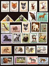 HONGRIE  Les animaux sauvages et familiers  82M-242T5