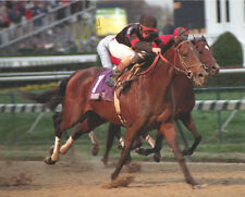 Awesome Again 1998 Breeders' Cup Classic SIgned 8x10 Photo Pat Day