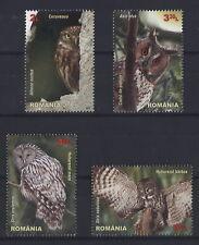 Rumänien Romania 2013 - Eulen Käuze Kauz Owls Hiboux Strigidae Roumanie 6721-24