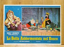 LA BELLA ADDORMENTATA NEL BOSCO fotobusta poster affiche Walt Disney 1959 AK41