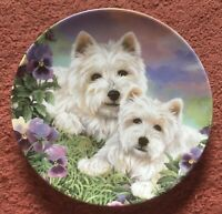 """Danbury Mint Royal Worcester The Westie Family """"Eyes Of Love"""" Plate"""