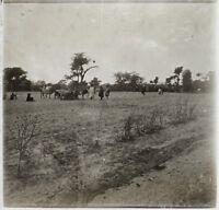 Africa Foto Placca Da Lente Stereo Positive D2 Vintage Ca 1910