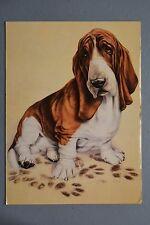 R&L Postcard: Athena, Sorry, Andrew farley, Basset Hound Dog Paw-Prints, Used