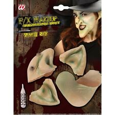 SFX WITCH SET Chin Ears Nose SFX for Halloween Oz Eastwick Cosmetics